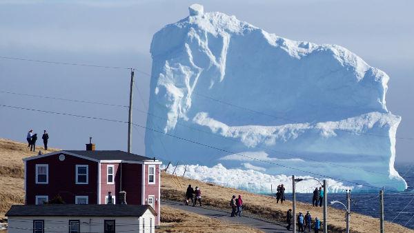 Njufaundlend, Kanada, foto: Jody Martin/Reuters