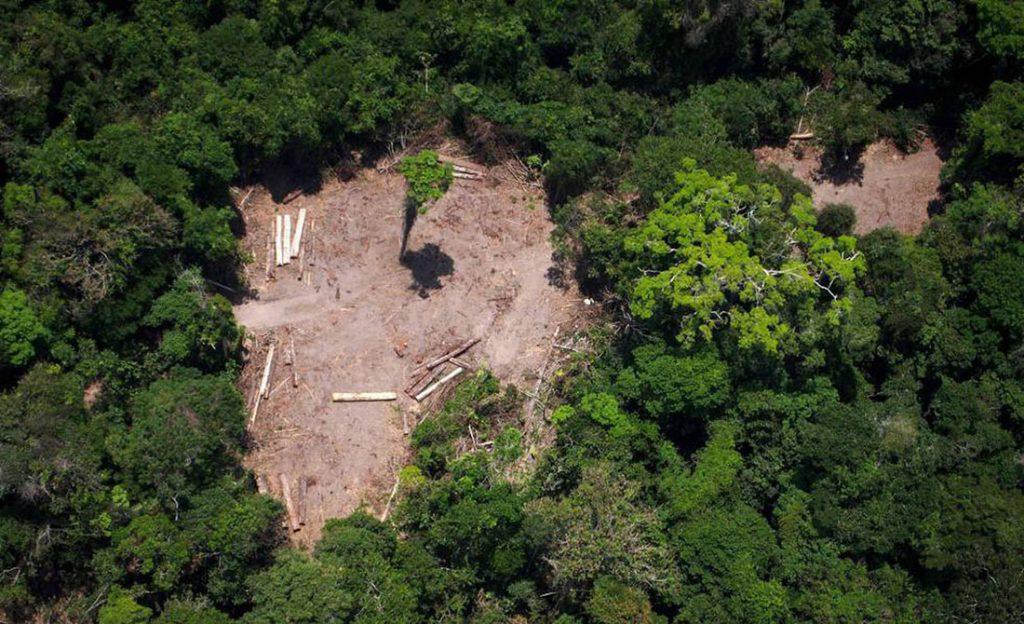 Amazonija, foto: Raphael Alves/AFP