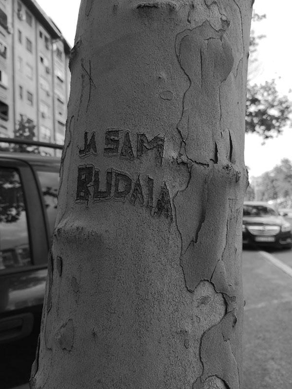 Foto: Uglješa Milanov