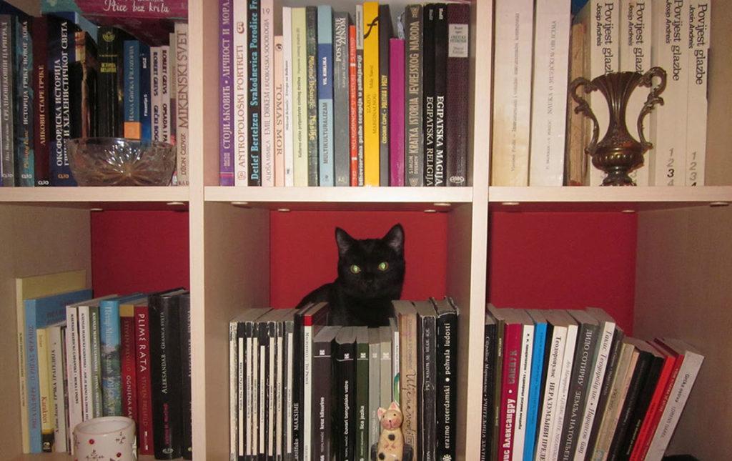 Ljubica u biblioteci, foto: Tatjana Kosanović