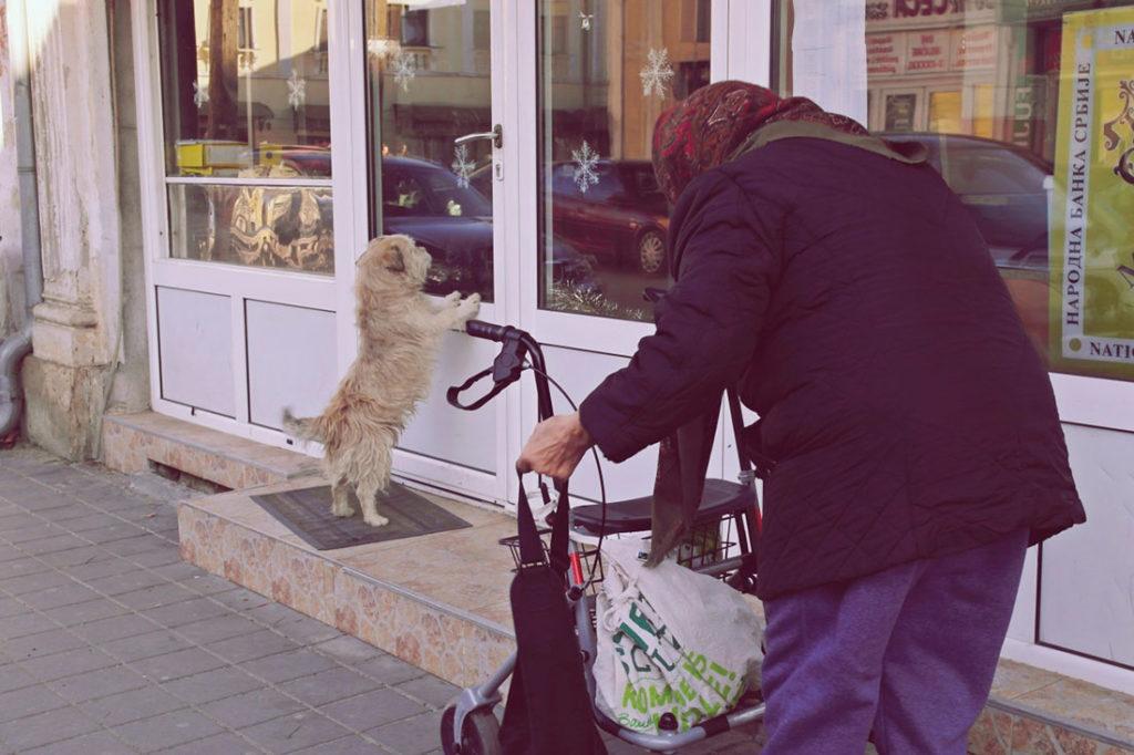 Starica na ulici