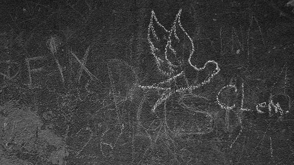 ptica nacrtana kredom na zidu