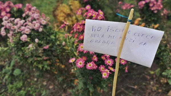 Upozorenje: Ko iščupa cveće neka mu služi za groblje