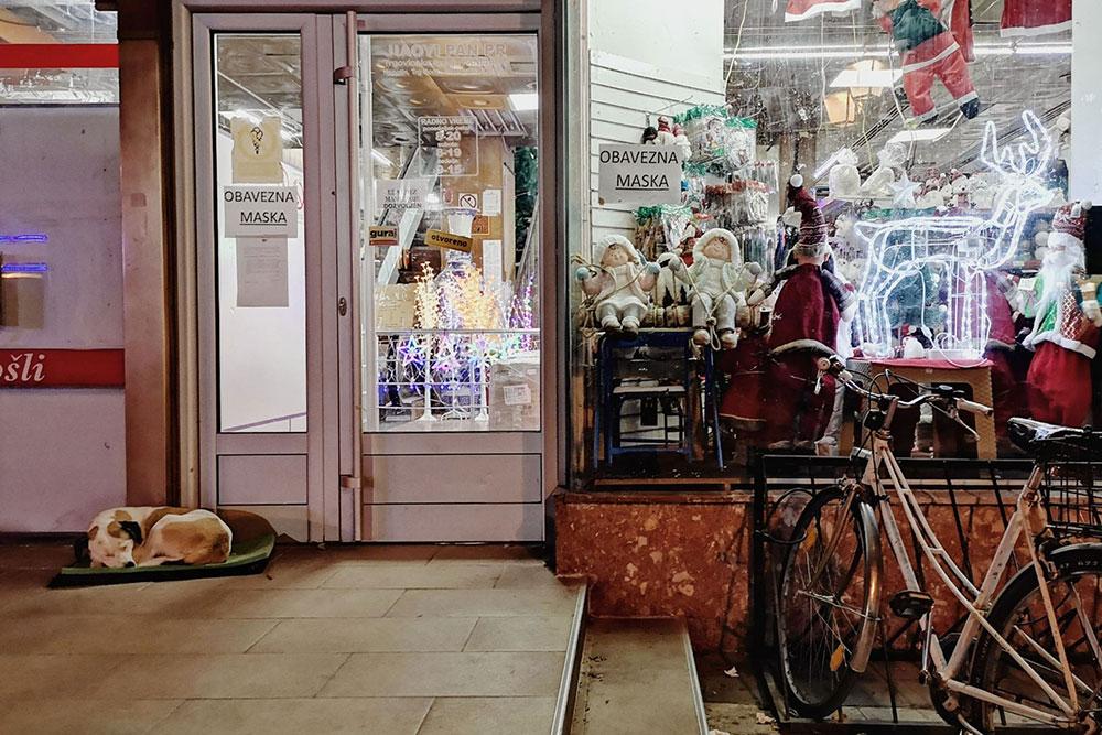 prodavnica novogodišnjih ukrasa oblepljena upozorenjima da je Obavezna maska