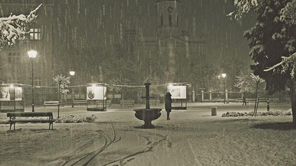 park pod snegom