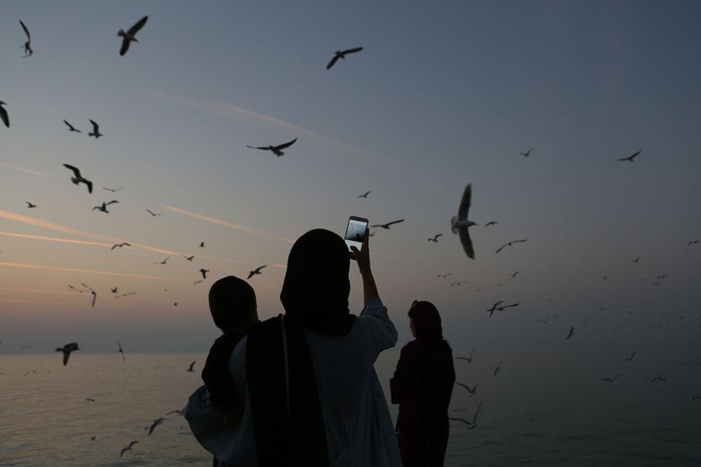 žene fotografišu galebove mobilnim telefonom