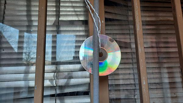 cd u prozoru