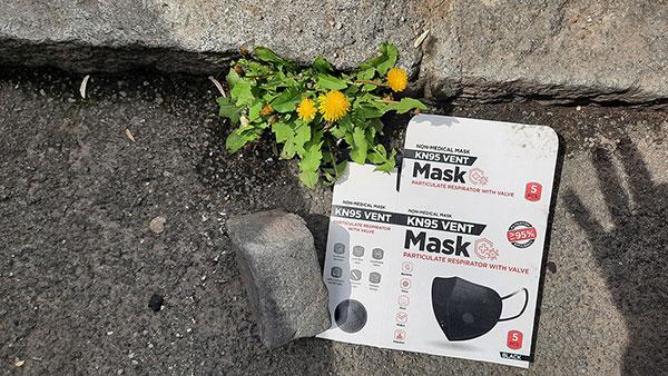 bačena kutija za maske