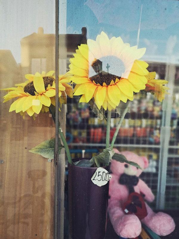 plastično cveće u izlogu prodavnice