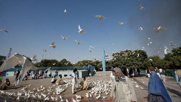 Ispred Plave džamije u Mazari Šarifu, Avganistan, foto: Konstantin Novaković